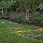 Moody's Creek