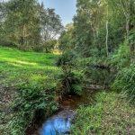 Moodys Creek