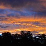 Bellinger Valley Sunsets